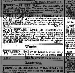 Lost on Hicks and Love Lane 20 Feb 1856