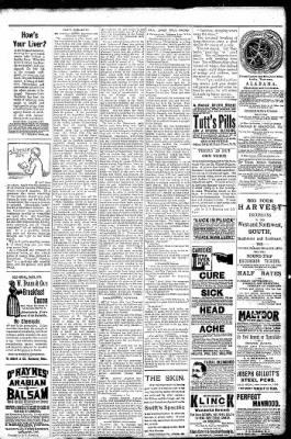 Logansport Pharos-Tribune from Logansport, Indiana on January 25, 1891 · Page 7