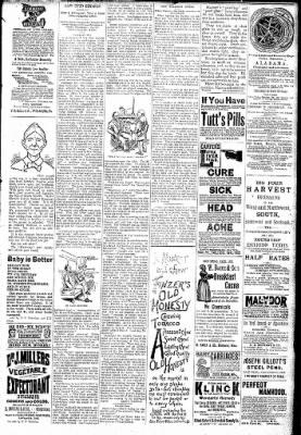 Logansport Pharos-Tribune from Logansport, Indiana on February 7, 1891 · Page 7