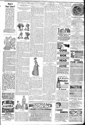 Logansport Pharos-Tribune from Logansport, Indiana on March 4, 1891 · Page 7