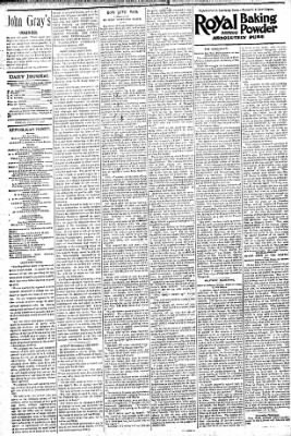 Logansport Pharos-Tribune from Logansport, Indiana on July 31, 1896 · Page 4