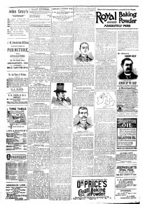 Logansport Pharos-Tribune from Logansport, Indiana on March 17, 1894 · Page 4